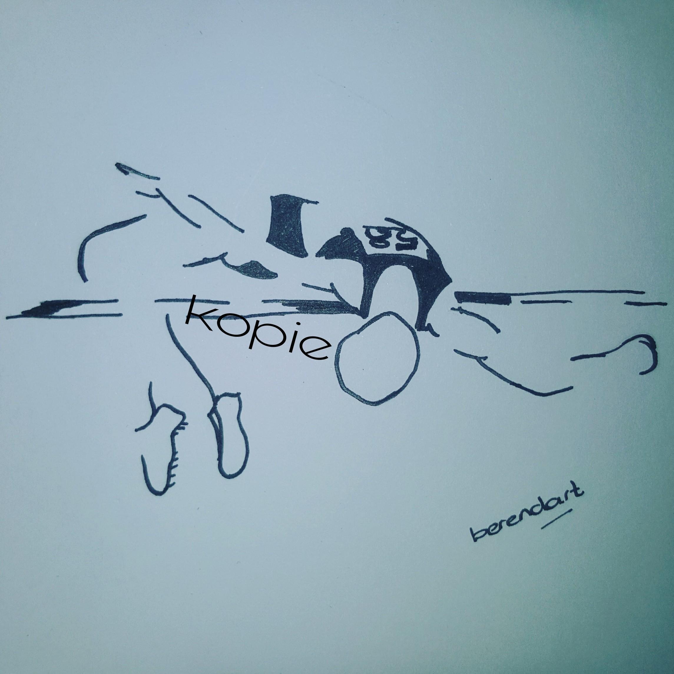 Hoogspringer